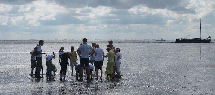 wadexcursie Schiermonnikoog
